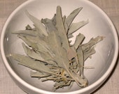 4 Cups Dried Organic Sage Leaf Cluster