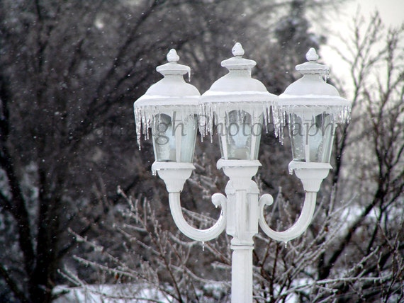 Snowy Lamps