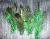 CRUELTY FREE Green Feathers for Crafts - Destash - Art and Craft Supplies DIY