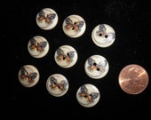 Wood Buttons with Butterfly Imprint - 2 Hole