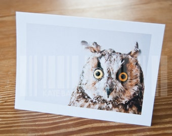 Bear the Long-eared Owl Blank Greeting Card