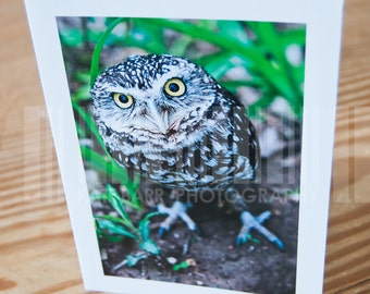 ZZ the Burrowing Owl Vertical Blank Greeting Card