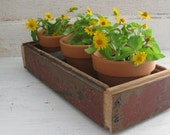 Rustic Wood Box with Three Clay Pots Farmhouse Cottage Decor Garden Planter Tongue and Groove Flooring Rusty Tin Red Paint