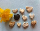 10 Tiny Heart Shaped Beach Stones from Kauai- Natural Hawaii Sea Coral- Supplies(C086)