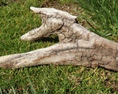 Large Natural Freshwater Driftwood for Reptile Habitat