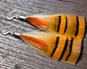 Handmade Feather Earrings - Golden Pheasant & Orange Lady Amherst Tips w/ Antique Silver Findings