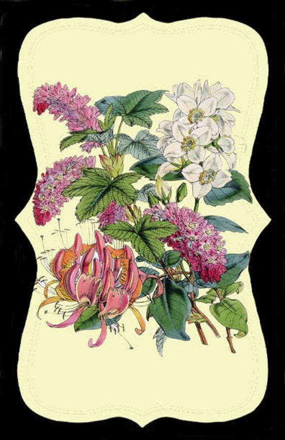 Vintage Flower Invitation
