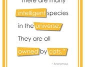 "Cats an Intelligent Species - Modern Typography Wall Art for Cat Owners (8x10""), matte paper, Free Shipping"