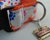 """Orange Paw cotton 1"""" dog collar"""