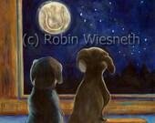 Dog Art - Gazing at the Night Sky