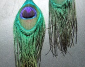 long peacock feather earrings