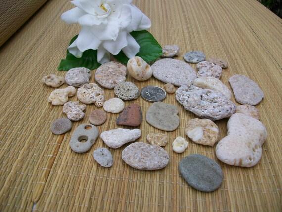 Beach pebbles, natural holes, ocean stones, crafts, cottage beach home decor (Lot 112)