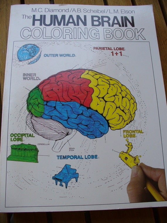 97 Human Brain Coloring Book Pdf