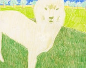 Alpaca illustration print
