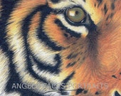 ACEO MAGNET TIGER. Magnet print of my original tiger marker pen and ink drawing - AngelsFacesPortraits