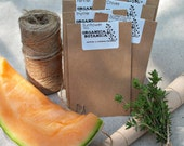 Organic Beneficial Bees Seed Collection