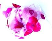 Shawl organza light and dark pink poppy flowers