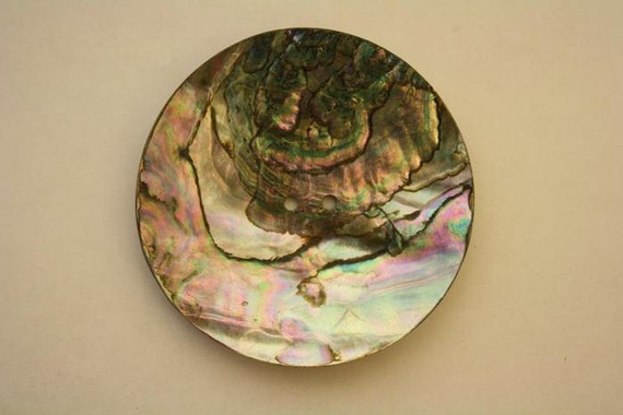 "3"" Abalone Disc - 2 holes"