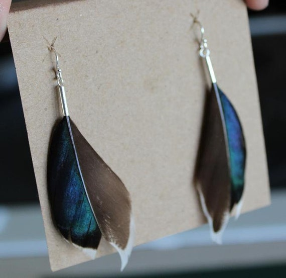 Real Feather Earrings - Mallard Duck Feather  - Cruelty Free - Dye Free - Free Shipping to the US