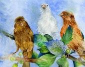 Garden Finches, Birds - Original Watercolor Painting 18X14