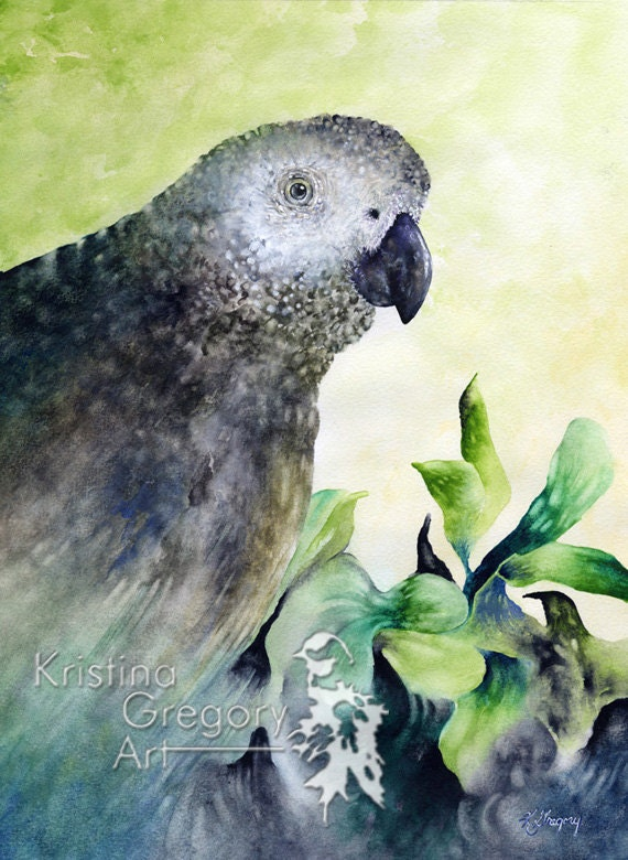 African Grey Bird, Parrot Print, Archival Reproduction From A Watercolor Painting