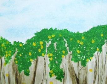 Sorrento Lemon Groves
