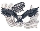 American Eagle - An original graphite drawing presented in a high quality 8 X 10 print.