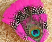 Pink Peacock Feather Headband/clip