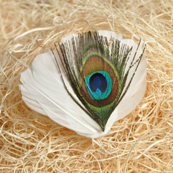 White Peacock Feather Headband/clip