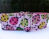 2 inch pink ladybug martingale collar