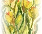 Daffodils for March - Note Cards or giclee archival