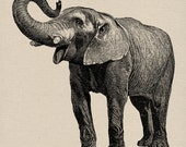 Big Elephant Vintage Image Paper Crafts Image Transfers For Pillows Clothing Tea Towels Tote Bags No. 31