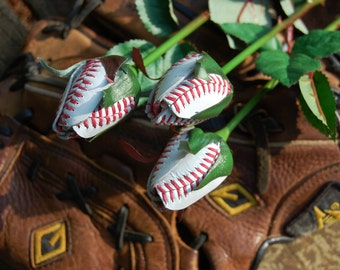 Baseball Sport Bud Roses