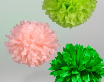 Tissue Paper Pom Poms Set of 5