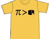 Pi vs. Cake Tshirt - CLEARANCE SALE