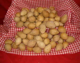 25 Quality SMALL Egg Gourds ( Dried & Cleaned)