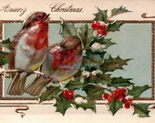 Vintage Greeting Card  - Digital Download No. 19 -  Image File - Christmas Holly with Birds - A circa 1910 Greeting