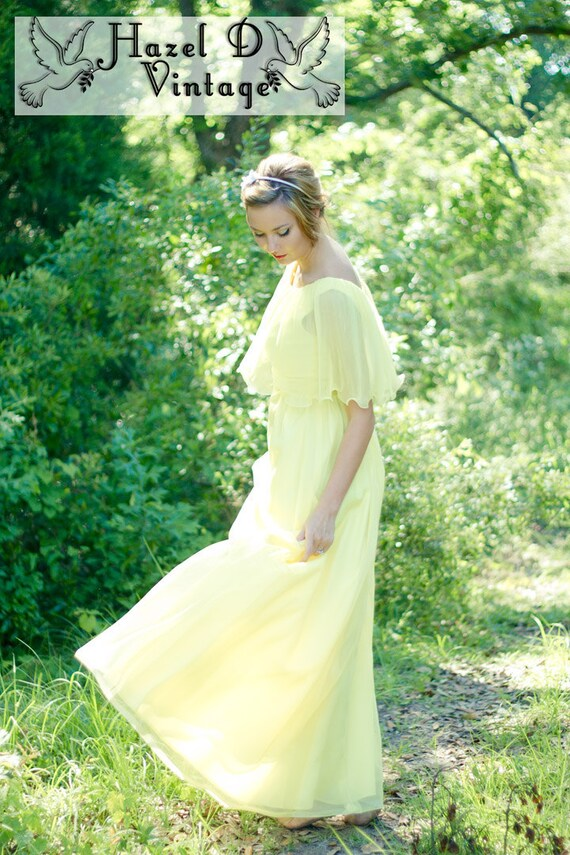 70s Vintage Chiffon Sylvia Ann Maxi Dress