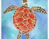 "Cards / Notecards - Set of 6 Jennifer Love Artwork Sea Turtles art notecard Assortment 4.25"" x 5.5"" - Brown Red Green EBSQ"