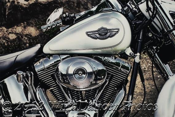 harley davidson motorcycle close up fine art photo. Black Bedroom Furniture Sets. Home Design Ideas