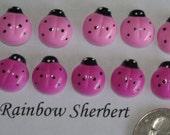 Pink Ladybug Cabochon- Flatback