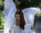 Items similar to xtra large adult fairy faerie costume for Angel wings wedding dress