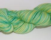 Hand Painted 100% Australian Organic Merino 4-ply Yarn - 100g