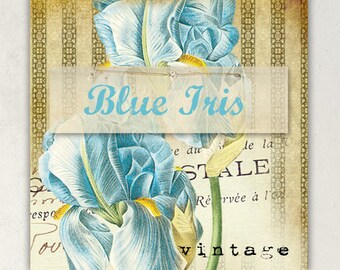 ETSY SHOP BANNERS Vintage Blue Iris