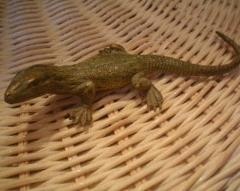 Antique  Vienna Bronze Lizard