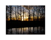 Travel Photography, Pastel Wall Art // Sunset Over the Woods // Well, the Netherlands // 11x14 print
