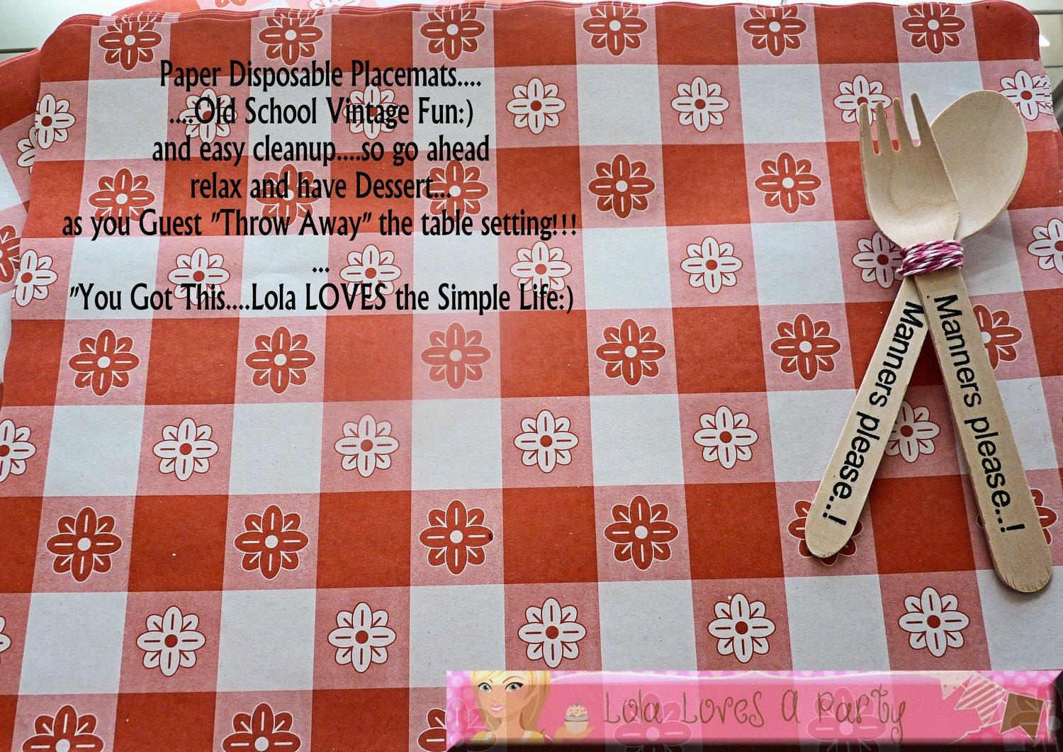 50 PAPER Red Gingham Placemats Vintage Look Disposable