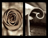 Wall Art with Alphabet Art Photography: HOPE (sepia tone)