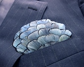 Lady Amhearst (Pocket Square)
