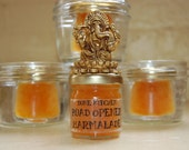 Road Opener Marmalade (1.25 oz jar) Kumquat Hoodoo Jam Jelly Preserves